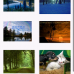 Image Thumbnails in GridView