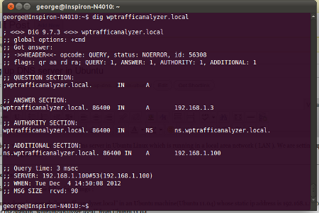 Testing the domain wptrafficanalyzer.local by dig