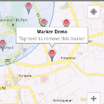 Remove Single Marker From Google Maps Android API V2